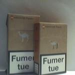 CAMEL Essential Flavor orange Additifs 0%
