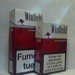 WINFIELD rouge blanc Additifs 8,5%